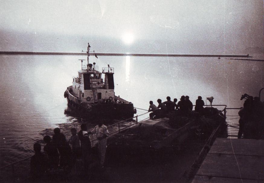 ростовское море золотой толстолоб